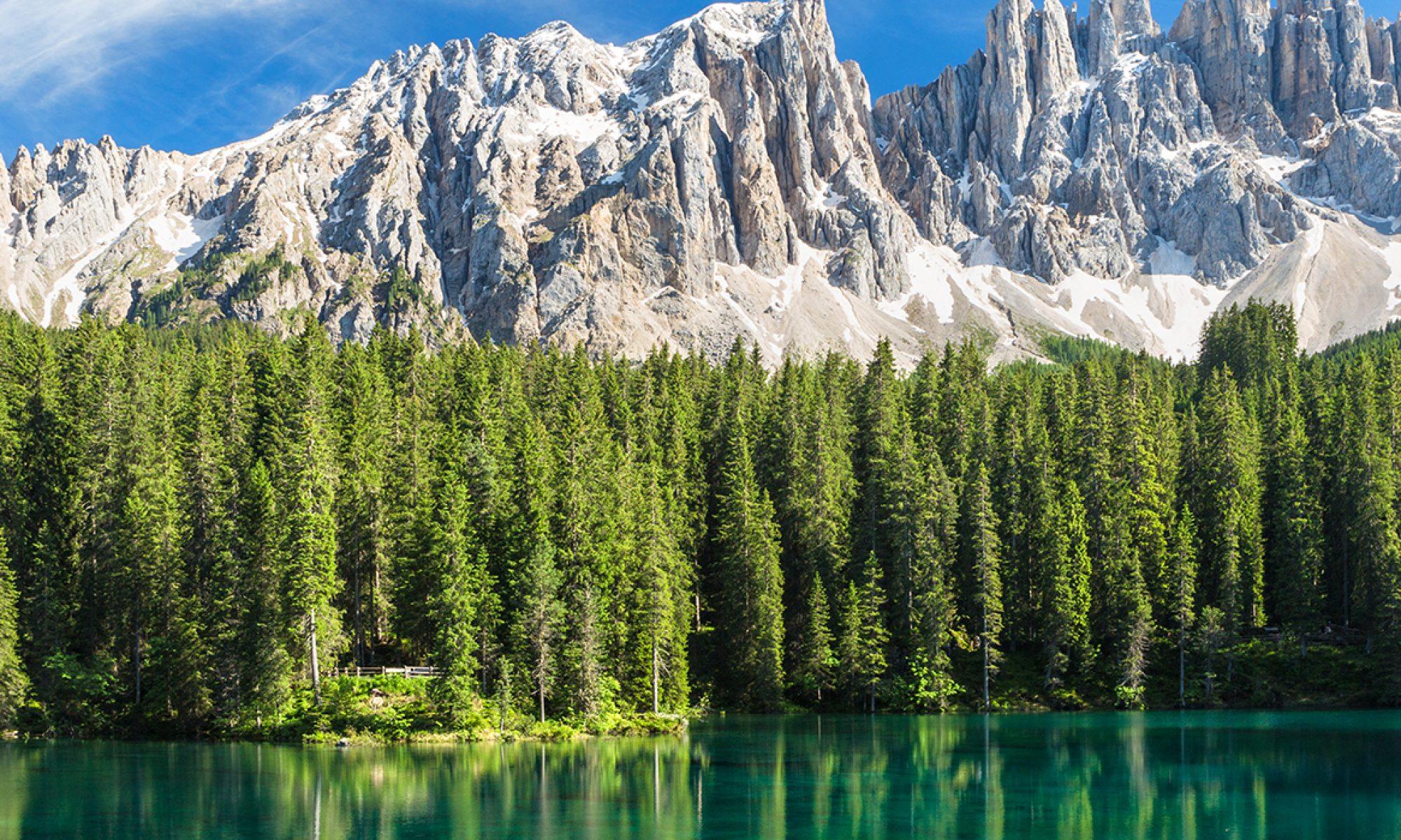 BOSK 2020 - The Bolzano Summer of Knowledge
